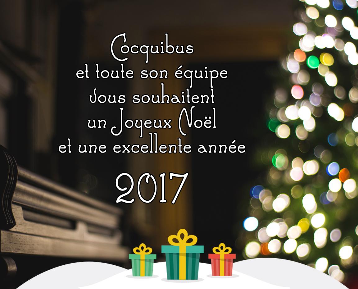 Photos De Joyeux Noel Et Bonne Annee.Joyeux Noel Et Bonne Annee 2017 Cocquibus Demenagement A